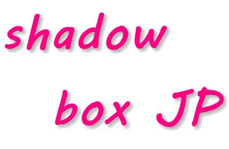 【WPプラグイン】Shadowbox JSの導入・設置方法!画像をかっこよく表示!